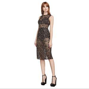 0310209514d NWT Riley Gold Metallic Lace Leopard Print Dress ...